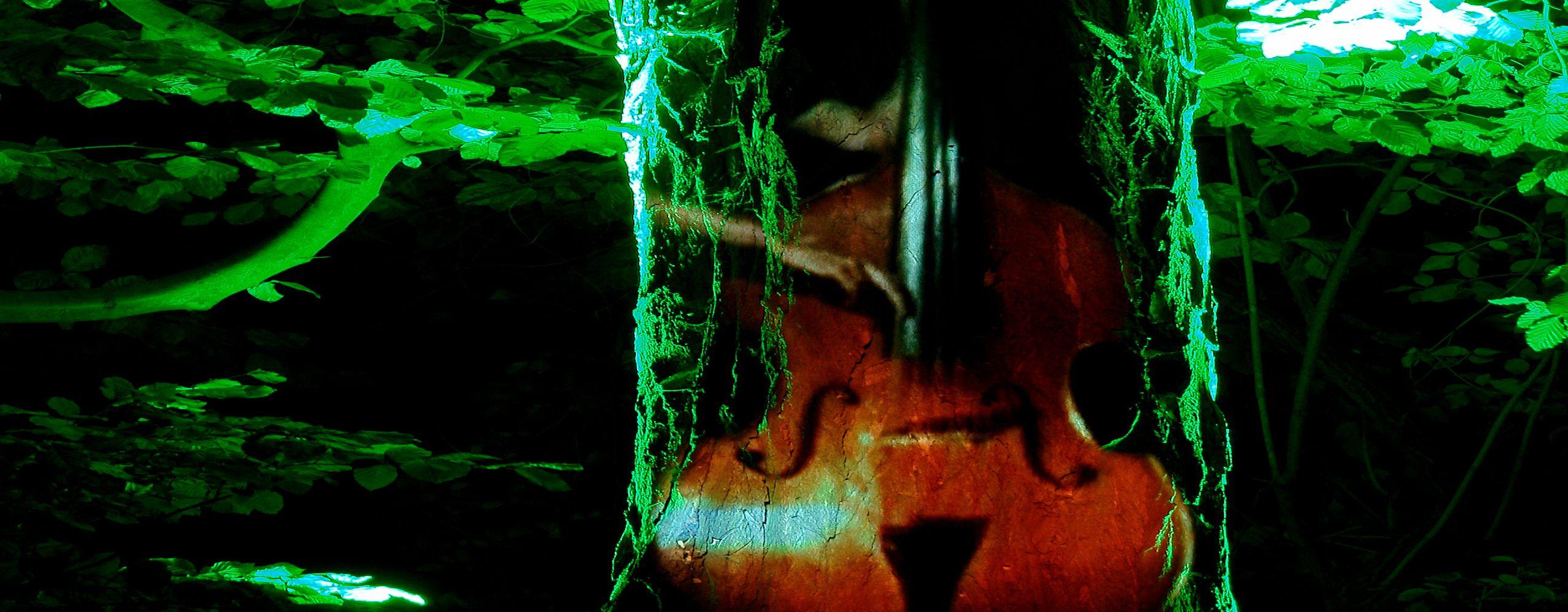 Parksymphonie_Cellobaum_Foto Bodo Brauer